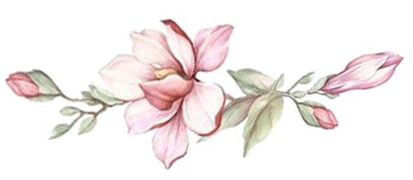 Flower Maja Ferme